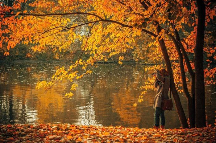 imagenes de paisajes naturales, el lago en el fondo con el arbol debajo de una chica haciendo una foto