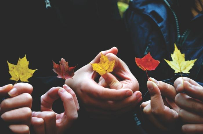 imagenes de paisajes naturales, manos de la familia sujetando hojas otoñales de diferentes colores