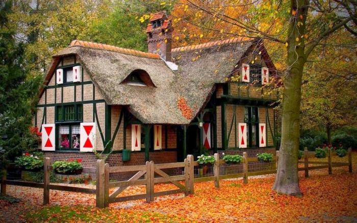 paisajes de otoño, casa en el bosque con ventanas y veranda de madera con el suelo lleno de hojas