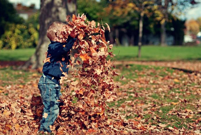 paisajes otoñales, niño jugandi en el parque con las hojas otoñales, tirandolas en el suelo, bonito
