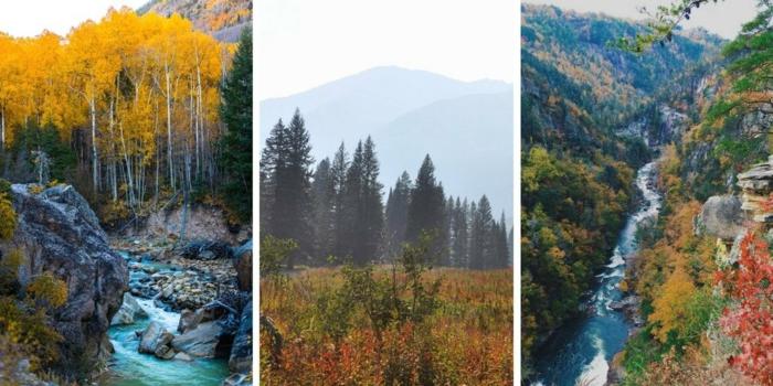 paisajes otoñales, tres fotos de paisajes de fotos hechas en otoño, collage colorido
