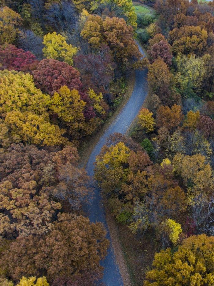 paisajes preciosos, carretera con curvas y arboles de diferentes colores de otoño