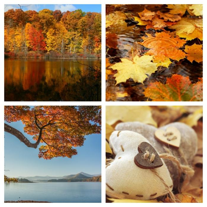 paisajes de otoño, cuatro fotos en collage otoñales, con cielo azul, arbol y lago en el fondo