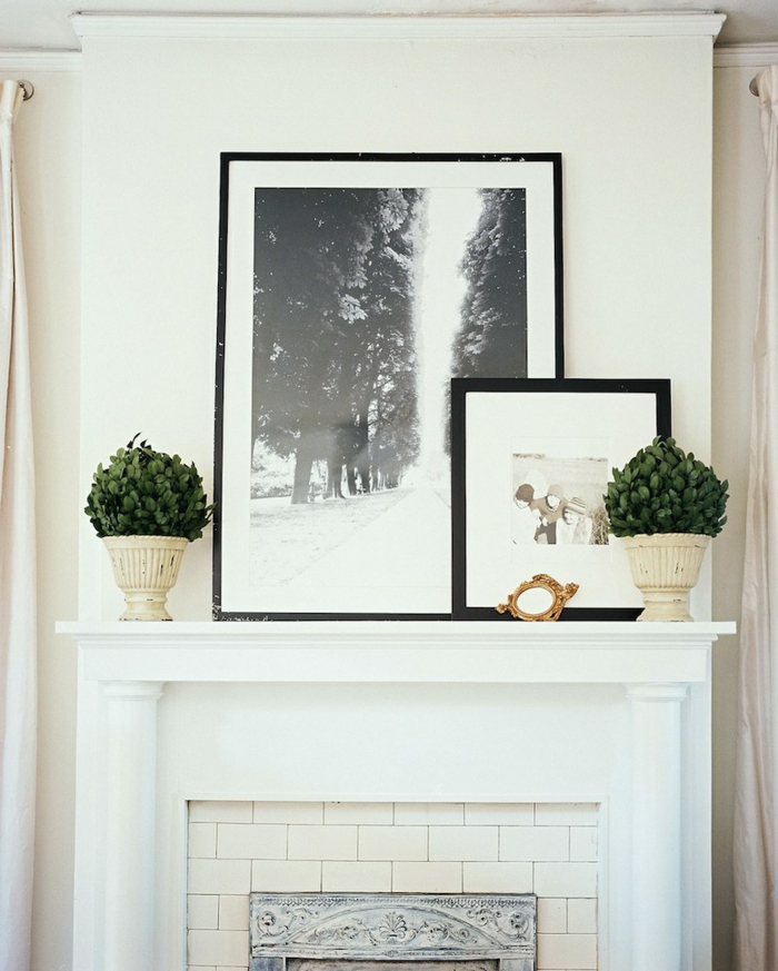 salón decorado en estilo clásico, plantas verdes y fotografías en marcos, chimeneas decorativas ikea