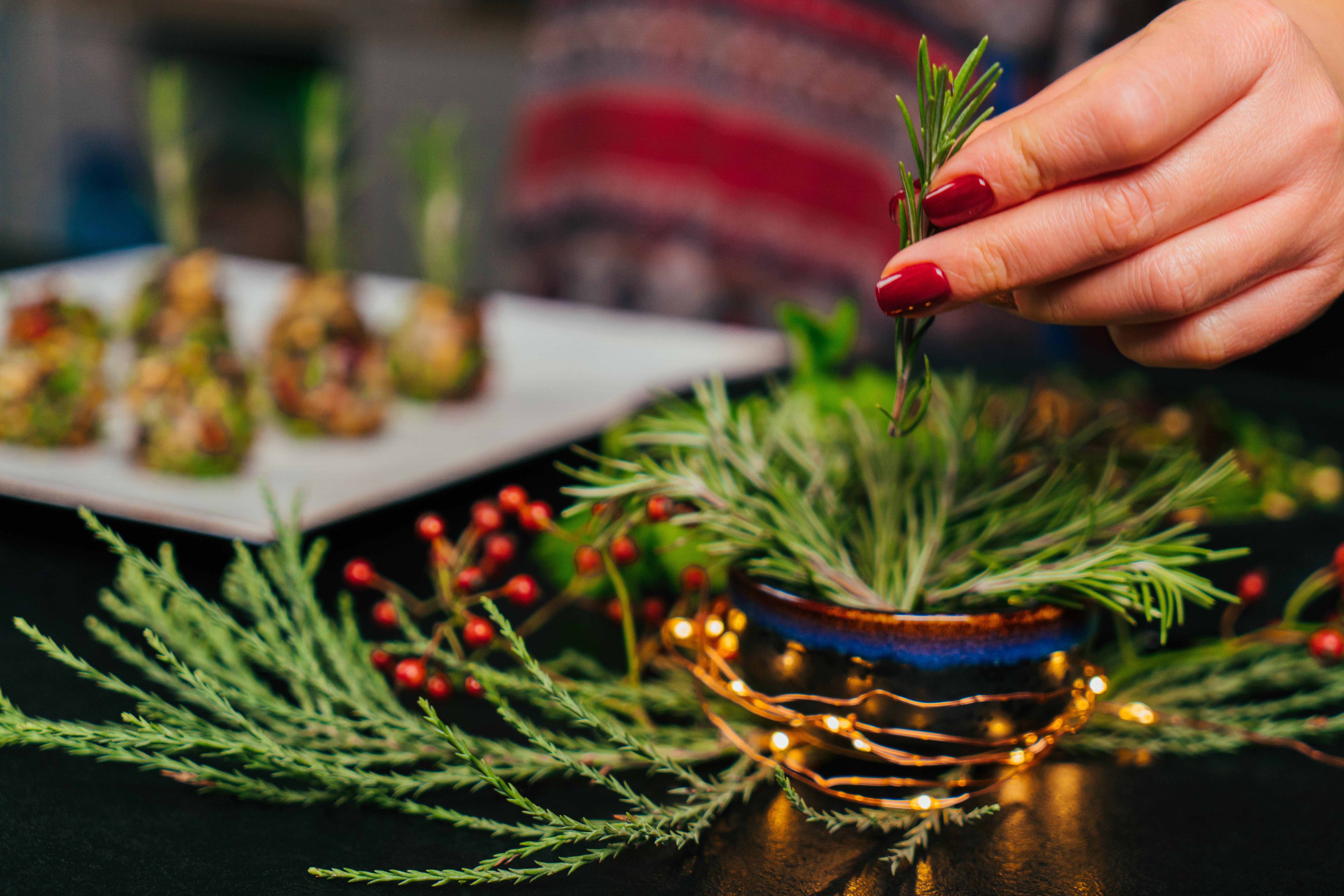 ramitas de romero fresco para decorar tus bocados navideños, canapés navideños fáciles y rápidos paso a paso en fotos