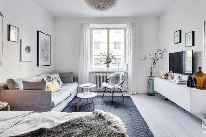 como decorar un piso pequeño en estilo escandinavo, sofá en gris, alfombra en gris oscuro, paredes con cuadros
