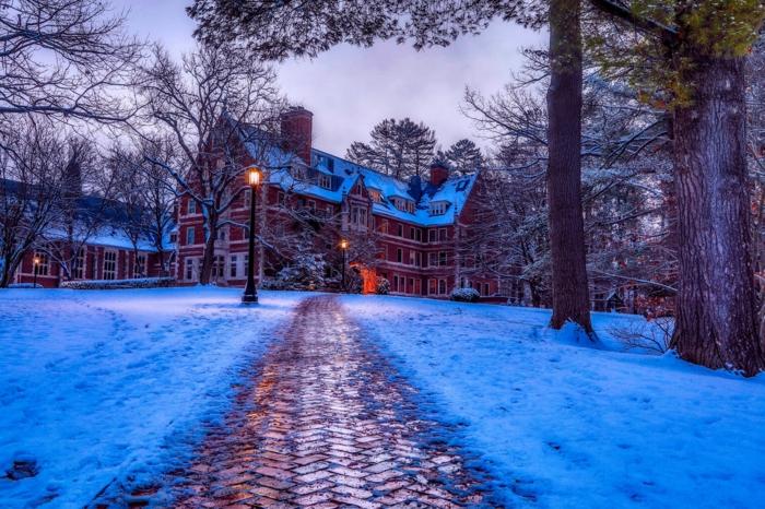 paisajes navideños que enamoran, bonitas fotos del invierno para descargar y enviar a tus amigos