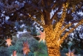 Decoración sostenible en Navidad con luces led