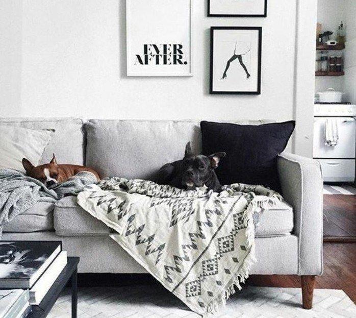 salon gris y blanco super moderno con paredes blancas y cuadros en la pared, alfombras negras