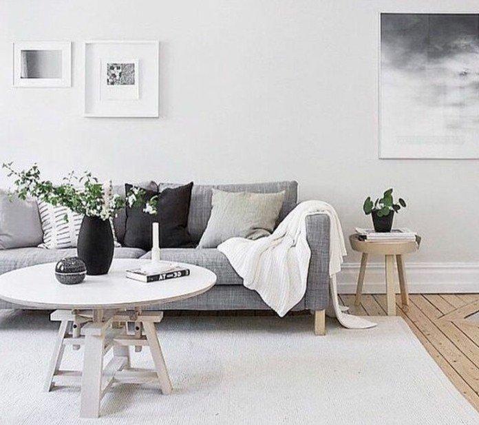 salon gris y blanco dcorado en estilo minimalista, decoración en las paredes y plantas