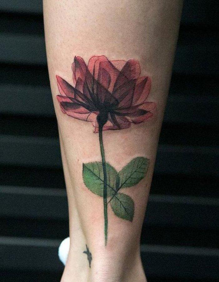 tatuaje en la pierna con rosa roja, diseños bonitos de tatuajes de rosas para hombres y mujeres