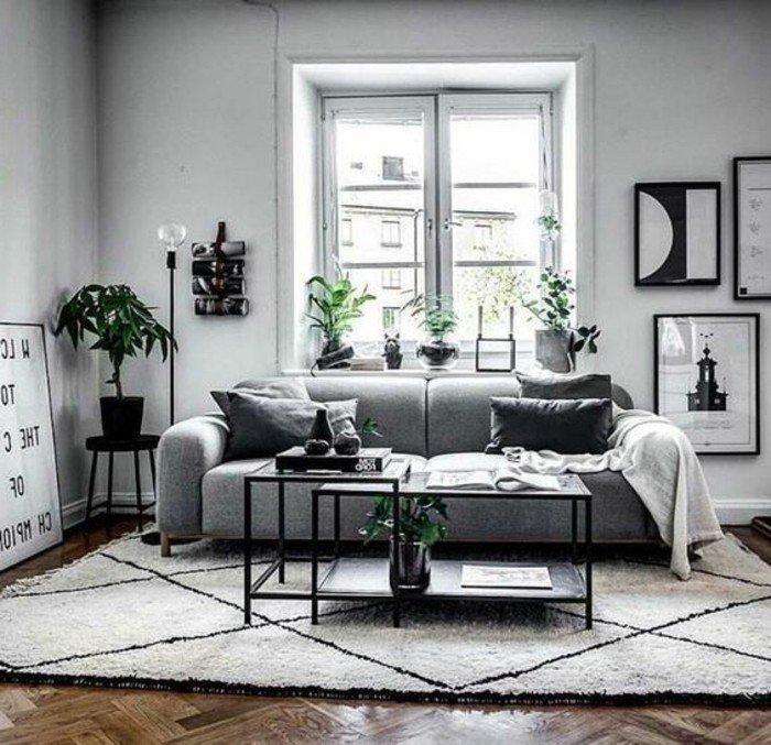 salón moderno con paredes grises y plantas verdes, sofá de diseño en gris, suelo de parquet y alfombra elementos geométricos