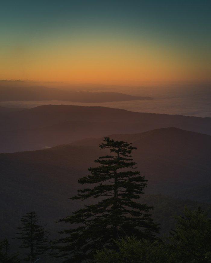 adorables propuestas de paisajes de naturaleza, fondos de iphone para descargar gratis
