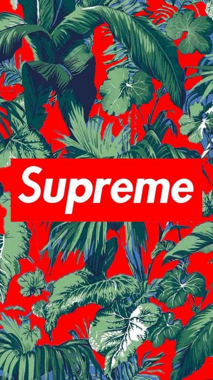 hermosos fondos de pantalla iphone en colores llamativos, fondo color rojo con palmeras y plantas verdes