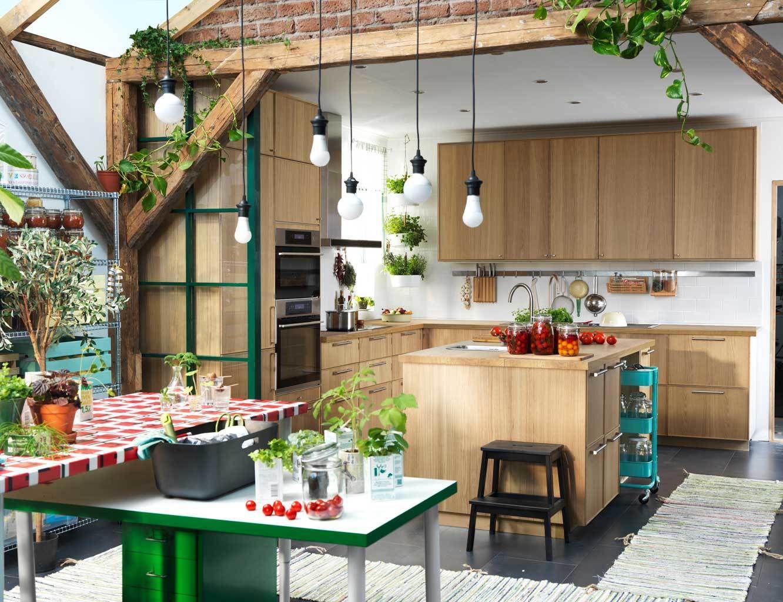 originales propuestas de cocinas modernas con isla, muebles de madera, decoración plantas verdes