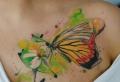 80 ideas de tatuajes de mariposas y su significado
