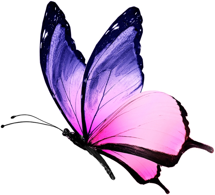 coloridas propuestas de dibujos mariposa tattoo, mariposa grande pintada en rosado y lila