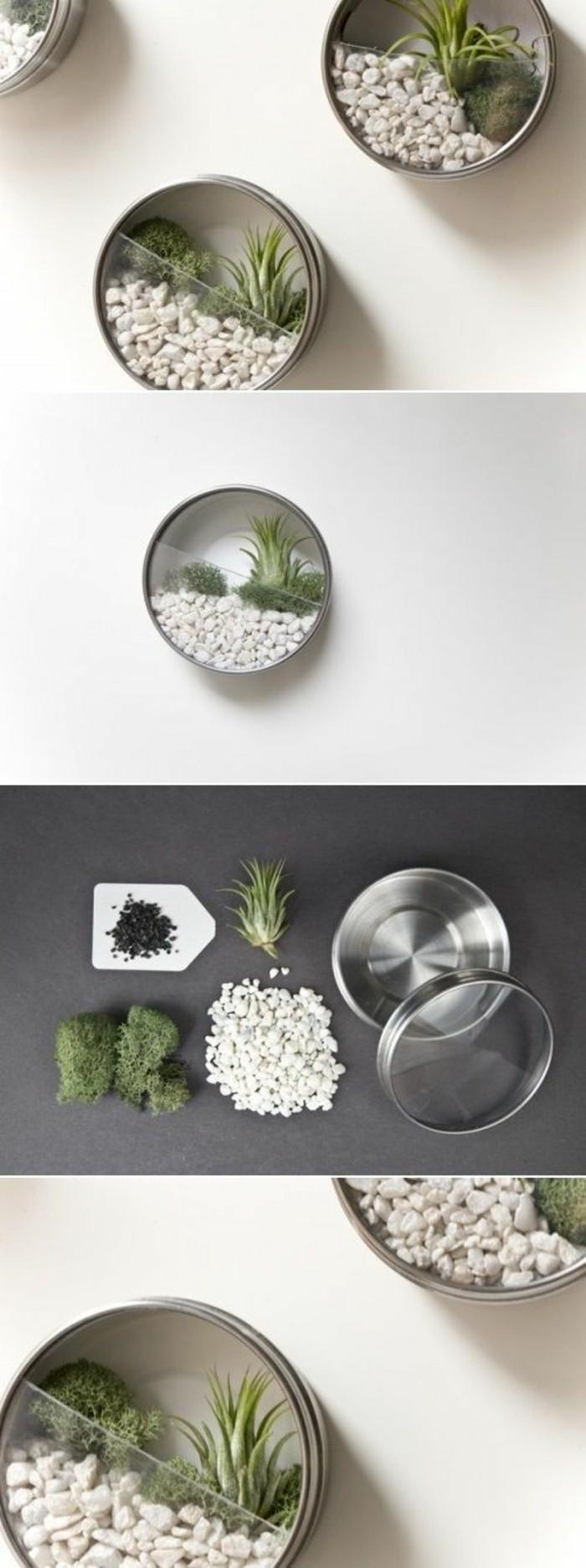 pequeño terrario hecho con partes de latas, bonitas ideas de manualidades con reciclar latas de conserva