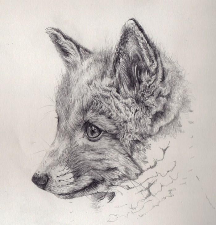 dibujos de animales en estilo realista, consejos para aprender a dibujar, imagines de dibujos sombreados