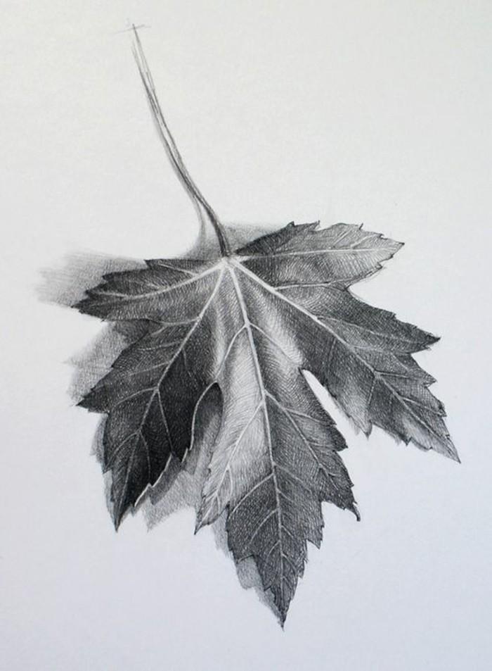 preciosa hoja de árbol dibujada con la técnica de sombreado, ideas de dibujos para dibujar a lapiz