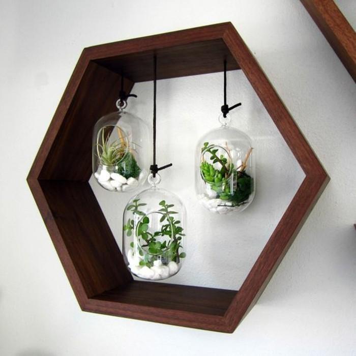 paredes decoradas con fotos y otros elementos decorativos, terrarios con piedras blancas y plantas suculentas