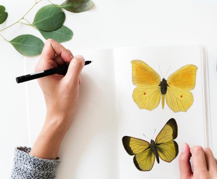 imagines para fondos de pantalla artísticos, dibujos de mariposas coloridas, fondos de patalla movil originales