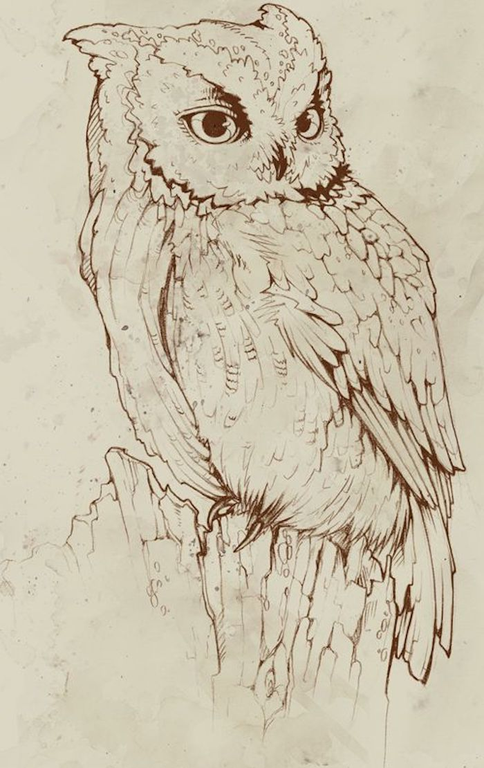 inspiradores dibujos para tatuajes, tatuajes de animales con fuerte significado, tatuaje buho bonito, tatuajes simbolos de la sabiduria
