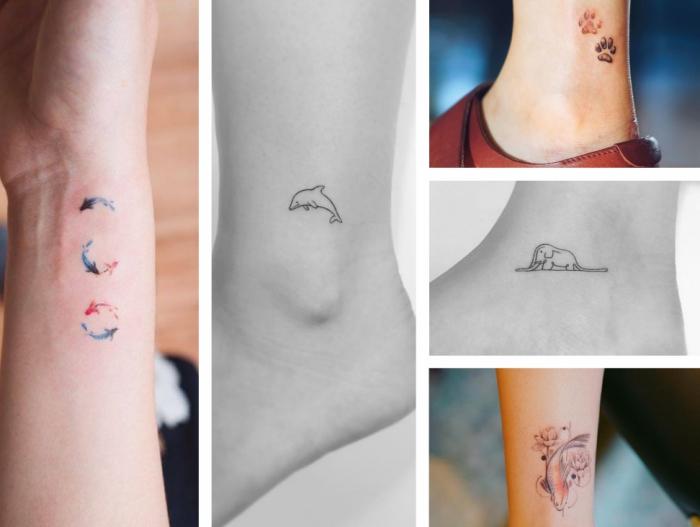 cinco preciosos diseños de tatuajes pequeños mujer, tatuajes pequeños en colores, peces en círculos, diseños con aniamales