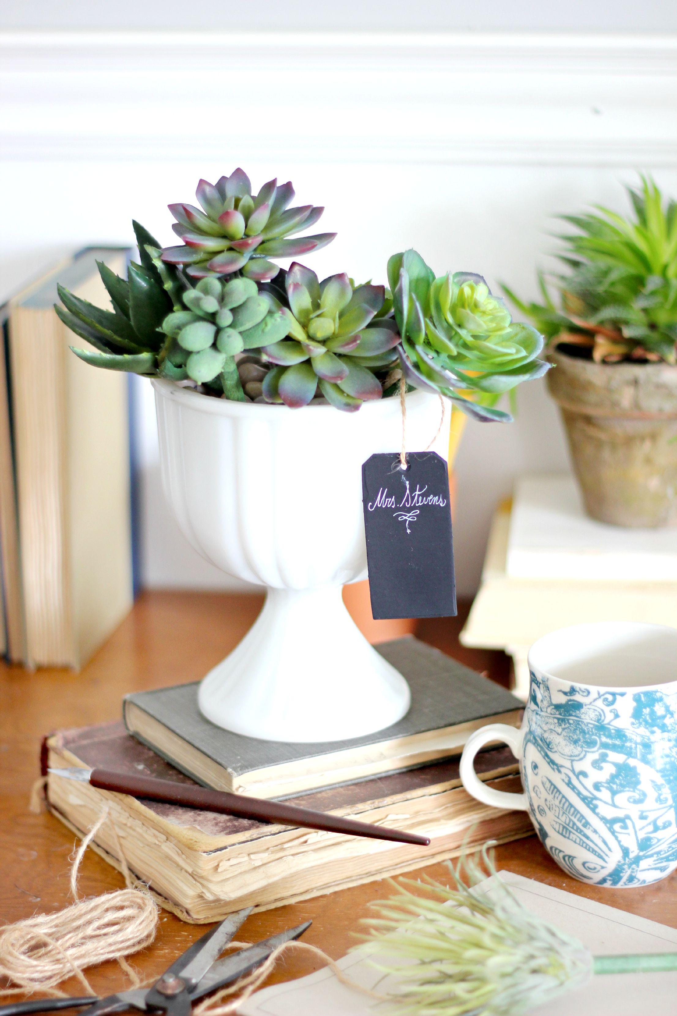 originales ideas de regalos para profesores hechos a mano, bolígrafos decorados con suculentas, regalos DIY unicos