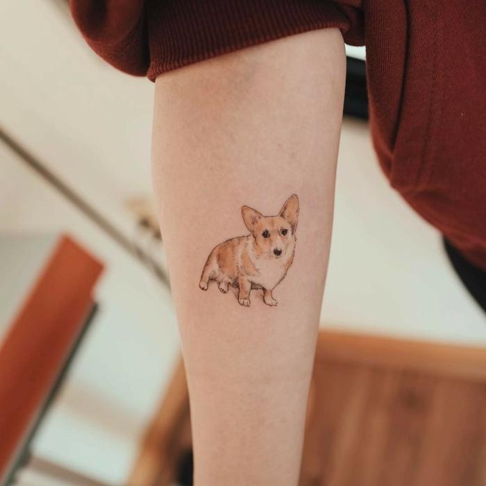 tatuajes originales de mascotas, tattoos pequeños y bonitos, diseños de tatuajes en el antebrazo, pequeño korgi tatuado en el antebrazo