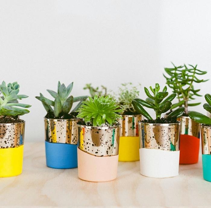 ideas de regalos únicos para invitados de boda, macetas originales en colores vibrantes con plantas suculentas, detalles de boda originales