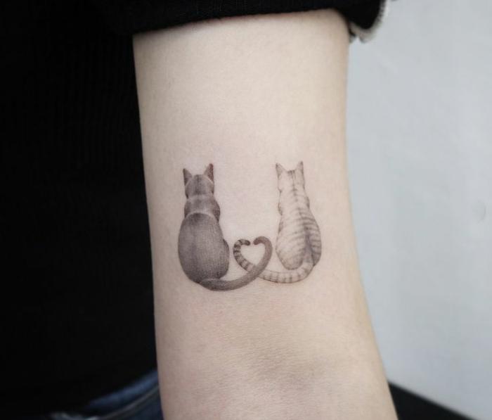 amor entre dos gatos con colas entrelazadas, tatuaje en el brazo simbólico, ideas de tattoos con animales y tatuaje familia