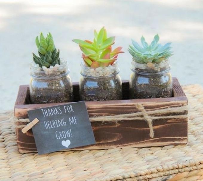 pequeños gestos para profesoras en fin del año escolar, ideas de regalos profesoras infantil, frascos con suculentas