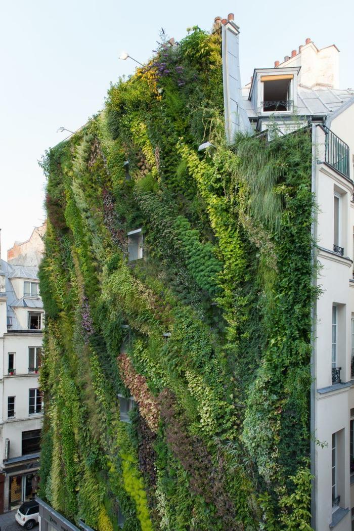 las mejores jardines verticales en Europa, el famoso muro verde en Madrid, España, jardin vertical original, bonitos ejemplos en 75 imagenes