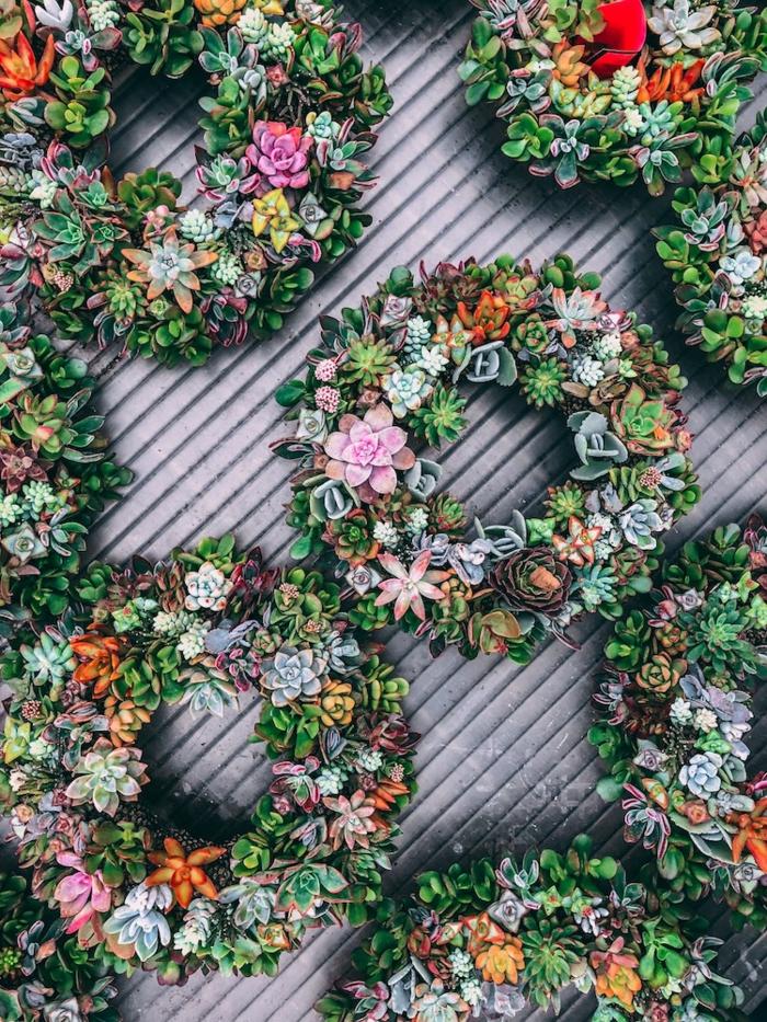 preciosas propuestas sobre como hacer un jardin vertical, coronas de plantas suculentas en un jardín vertical, ideas de decoración jardín