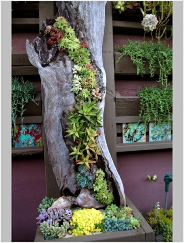 las mejores ideas sobre como hacer un jardin vertical en tu patio, tronco de árbol con cactus, plantas suculentas y trepadoras