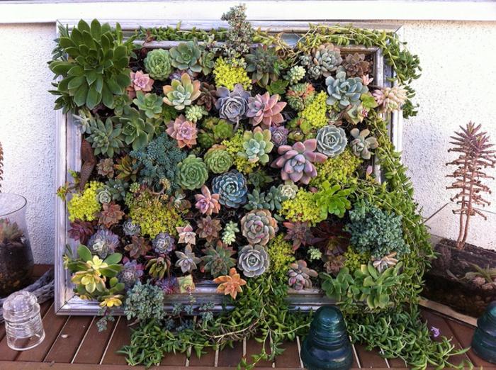 ideas sobre como hacer un jardin vertical paso a paso, 75 imagenes de huertos y jardines verticales, decoracion con plantas suculentas