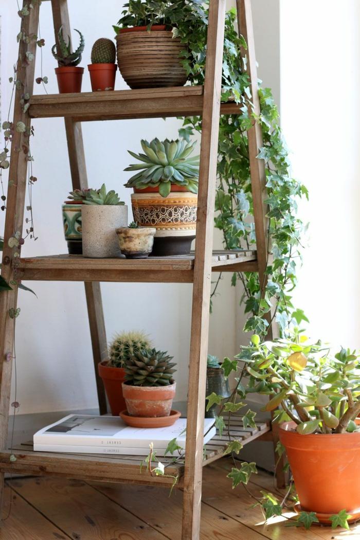estantería de madera con plantas para decorar tu casa en estilo bohemio, como hacer un jardin vertical en tu salón