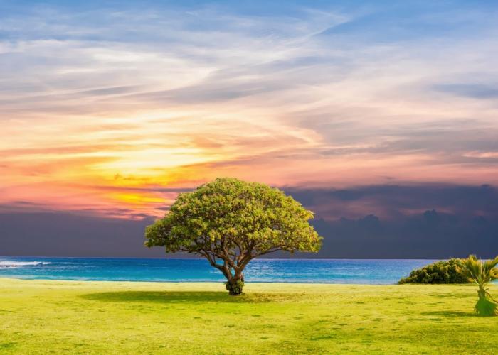 paisajes en colores para poner como fondo de pantalla en tu ordenador, paisajes de naturaleza únicos que puedes descargar gratuitamente