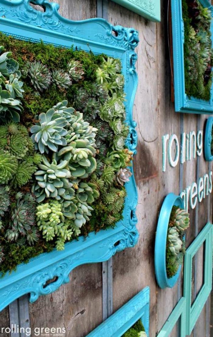 ideas de jardines pequeños verticales con suculentas, cuadros vivos con plantas suculentas hechos con marcos en estilo vintage