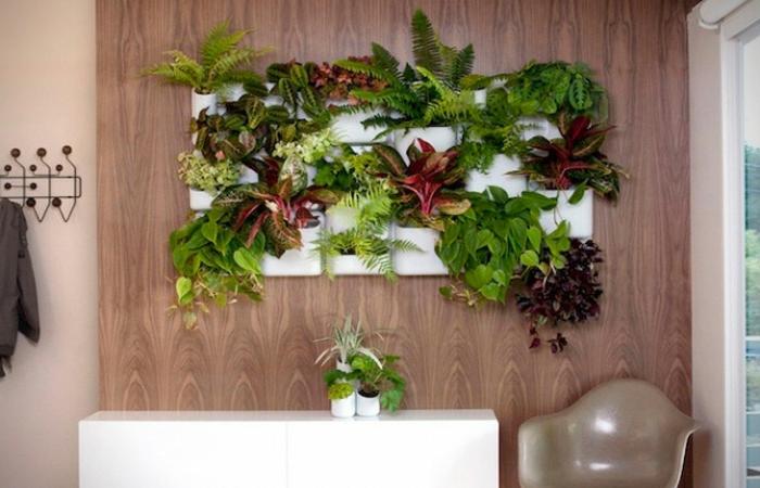 interesantes propuestas sobre como decorar la pared con plantas verdes, bonitas ideas sobre jardin vertical interior