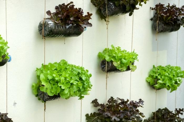 decoración con materiales reciclados, decorar jardin con botellas de plástico recicladas, ejemplos de jardines verticales originales