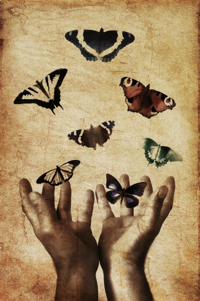 fotos y dibujos originales y bonitos, dibujo de manos de hombre con mariposas, super originales ideas de fondos pantalla