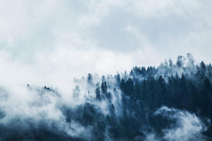 imagenes de paisajes naturales, paisajes de otoño bonitos e inspiradores, las mejores fotografías para poner como fondo de tu pantalla