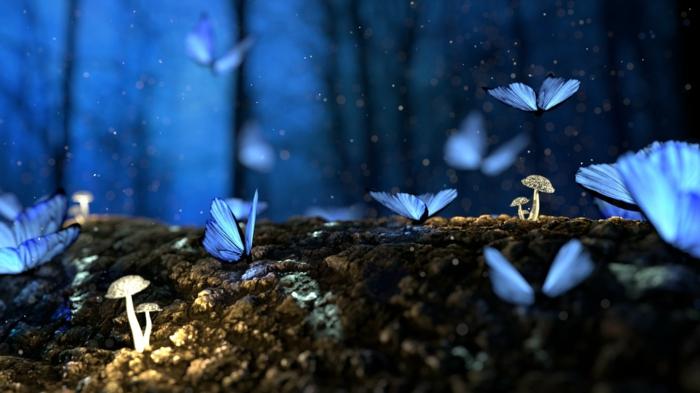 imagenes de paisajes naturales y fotografías mágicas para tu fondo de pantalla, adorables fotos en colores fríos para tu pantalla