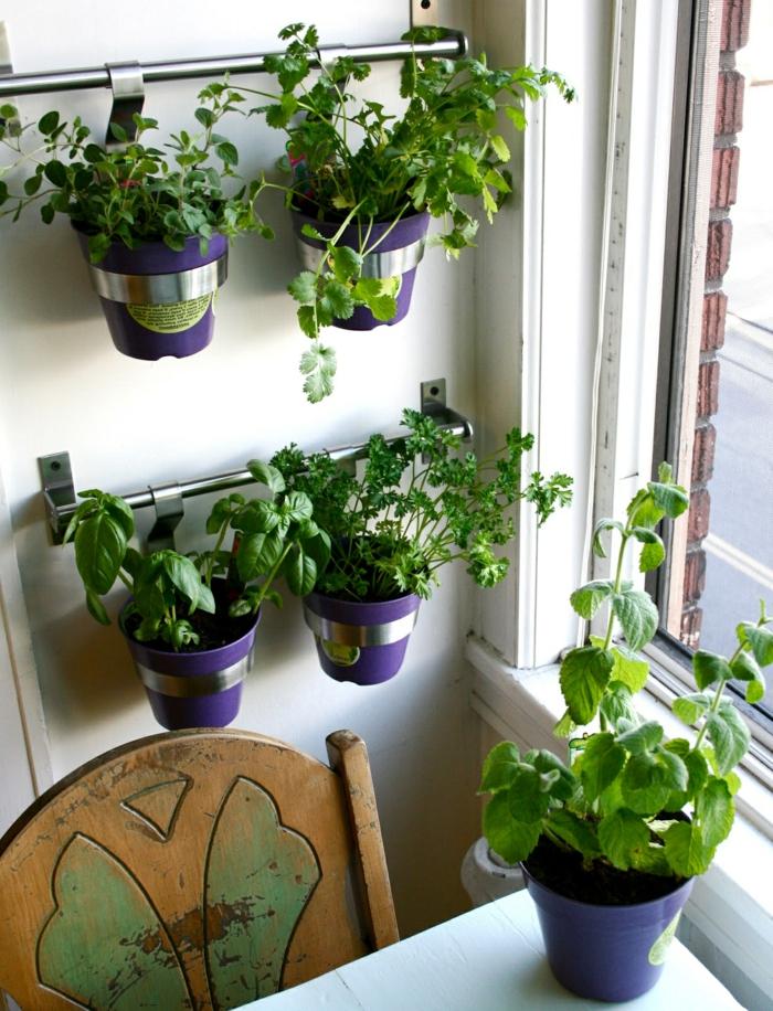 super originales ideas sobre como plantas diferentes especias en tu cocina, tipos de jardineras de madera y metal