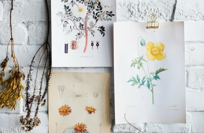 foto en estilo vintage con dibujos de flores y motivos botánicos, fotos que inspiran para todos los gustos, bonitas fotografías