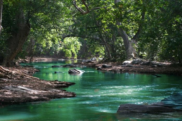 adorable paisaje verde, 100 propuestas de fondos de pantalla con paisajes naturales que reducen el estrés y mejoran el humor