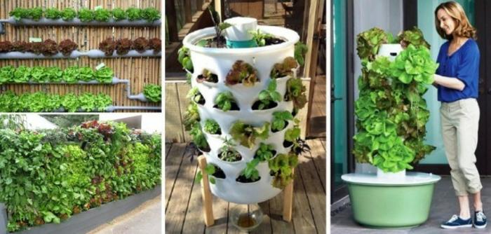 tres variantes de jardines verticales para copiar en tu jardín, jardines verticales originales para tu patio, 75 fotos de jardin vertical