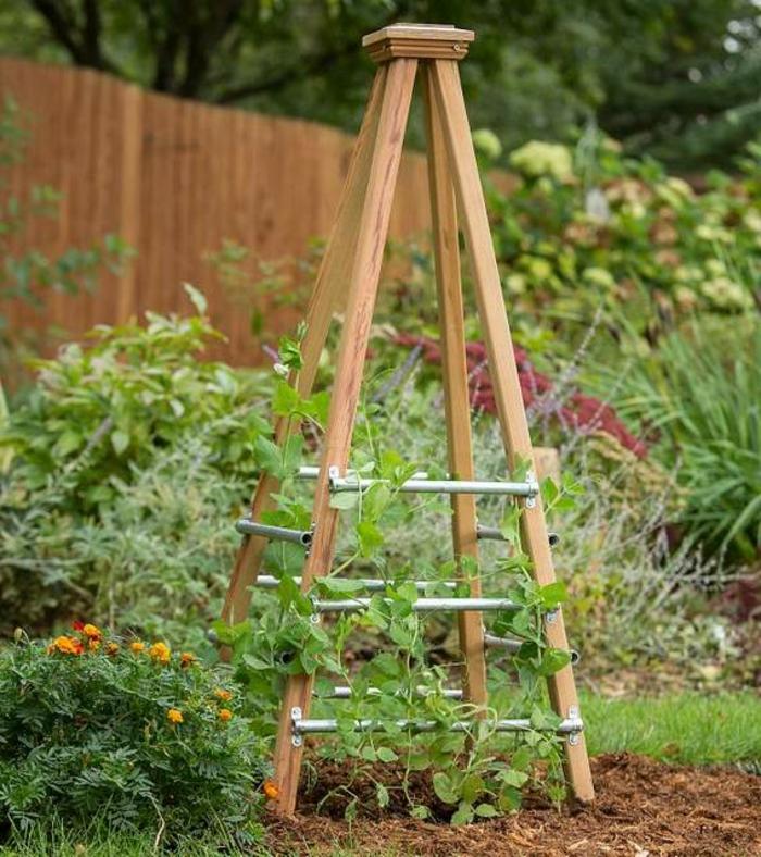 sugerencias para plantas trepadoras en tu jardín, como hacer un jardín vertical original paso a paso, las mejores ideas en fotos